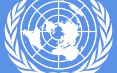 Inside the Model UN