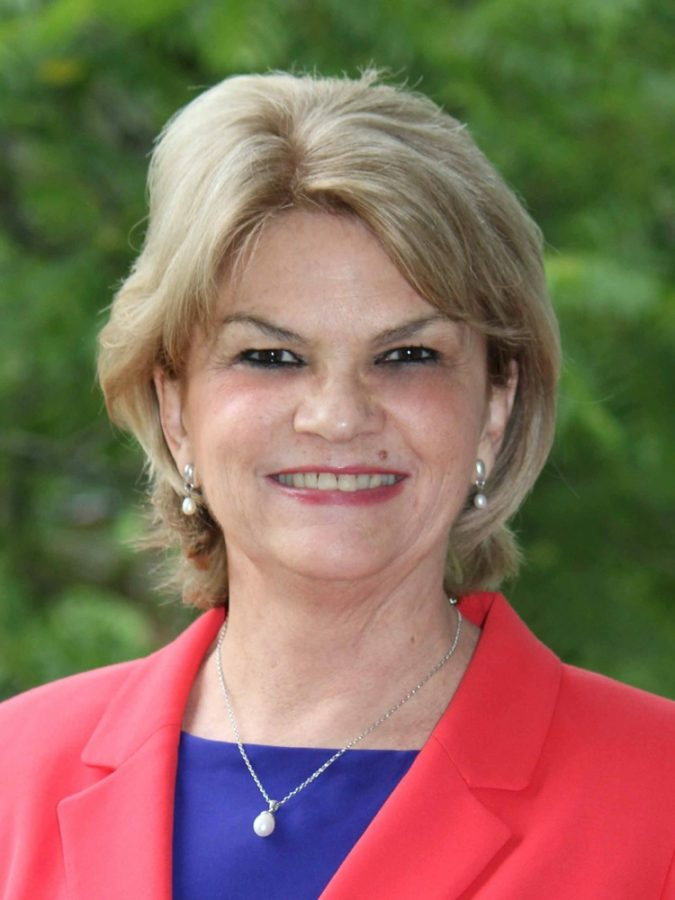 Interview with Cathy Wilson, Chairwoman of the Morris Township Democratic Committee