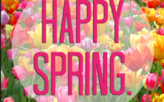 Student Spotlight: Spring Break