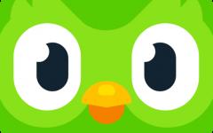 Duolingo: Do This App!